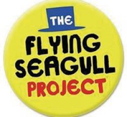 flying-seagull-logo