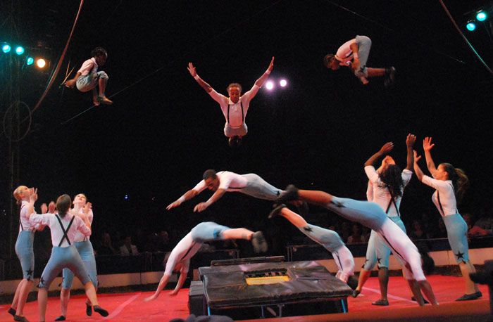 Circus Harmony